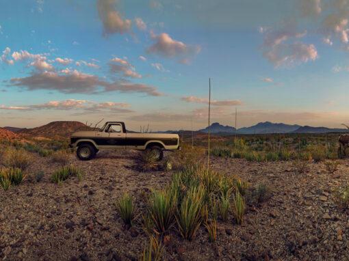 Desert Door Texas Sotol